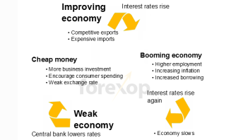 Interest rate cycle diagram