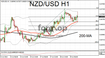 NZD/USD rally loses traction