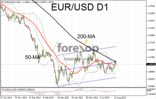 EUR/USD falls after rally loses momentum