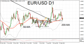 EUR/USD rebounds after falls