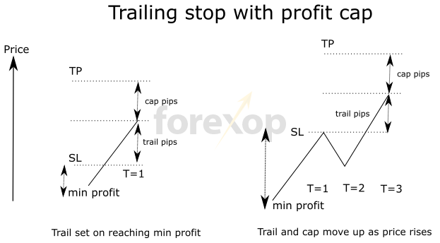 Put option trailing stop techniques