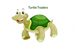 Forex turtle trading system