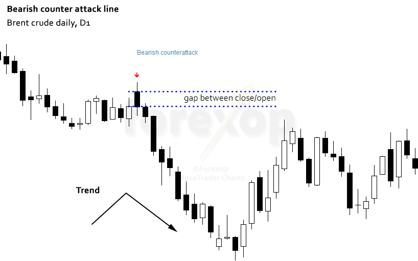 Figure 4: Example of a bearish counter attack, crude oil daily chart